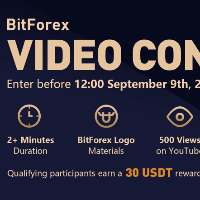 BitForex Video Contest - win up to 2,000 USDT!