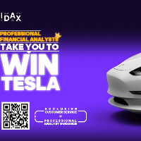 Professional Financial Analysts take you to win a Tesla