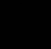 rotterdamsejongensdromen